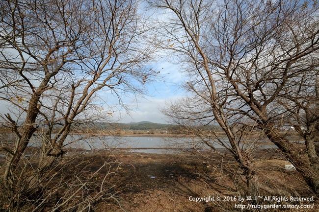 경주 여행 / 배스 낚시 명당 대재지(조양못)의 초겨울 풍경