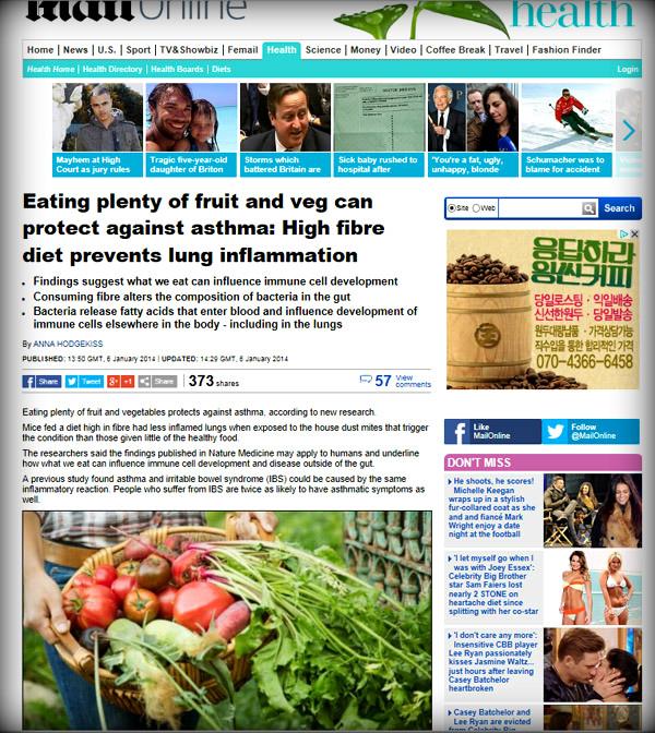 채식-천식-감기-육아-보육-소아과-건강-건강관리-힐링-웰빙-아이-소아과-병원-약국-약사-의사-장수-수명-식이섬유