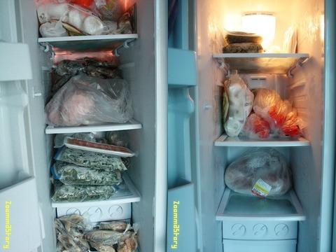 냉동실 정리,