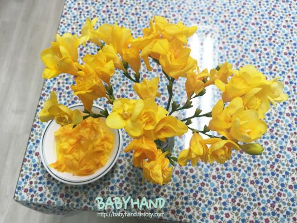 꽃 물주기 tip