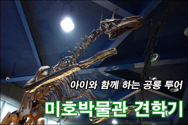 아이들과 함께 하는 공룡 투어, 미호박물관 견학기