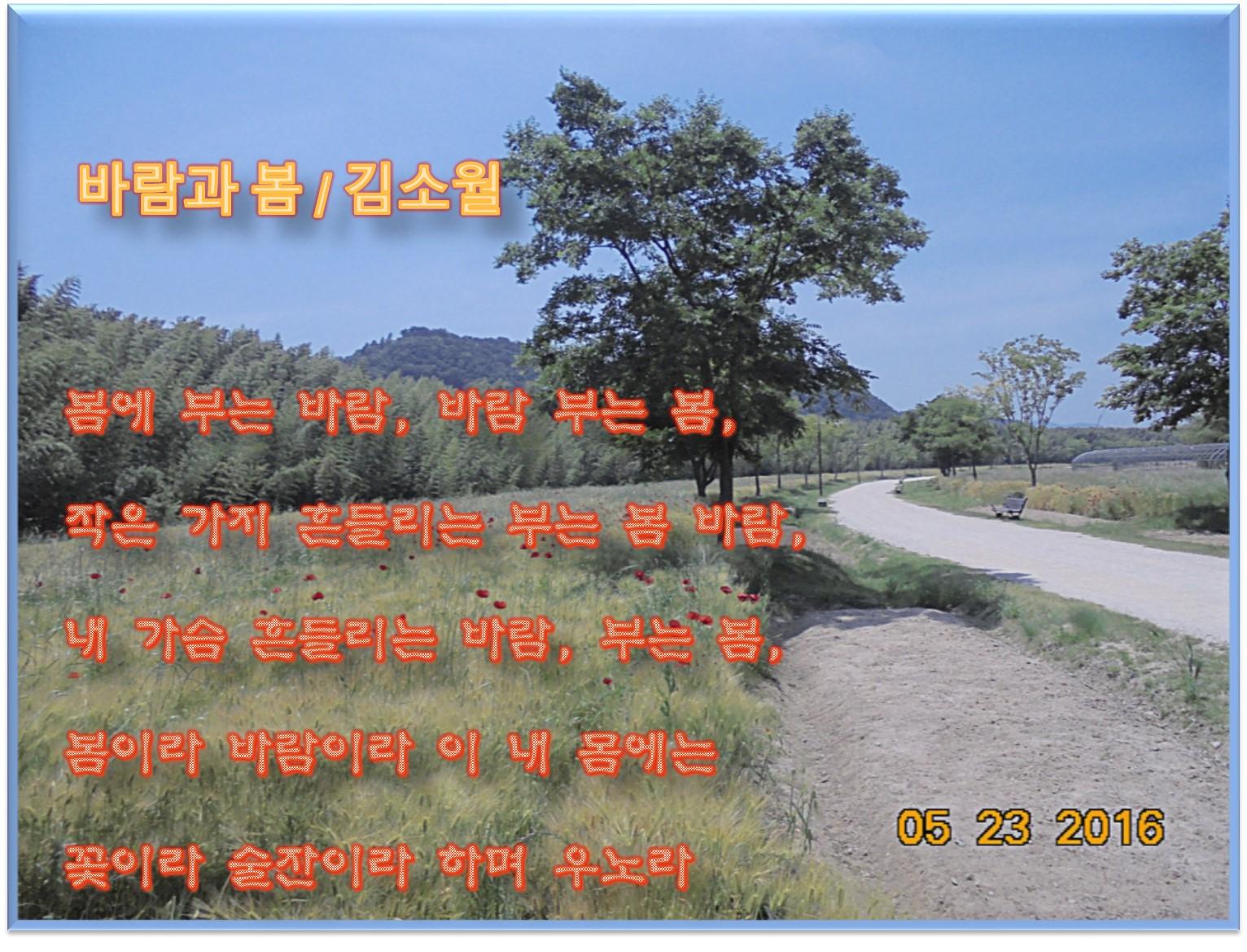 이 글은 파워포인트에서 만든 이미지입니다  바람과 봄 / 김소월