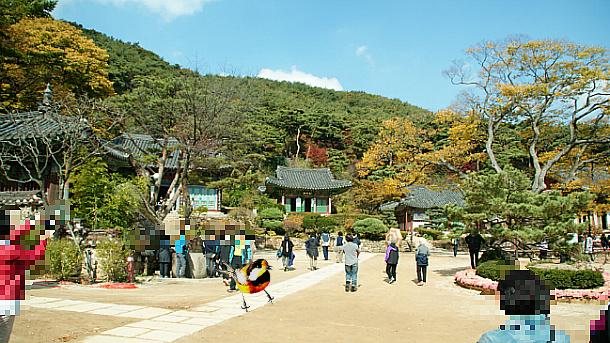 전등사(傳燈寺)의 가을