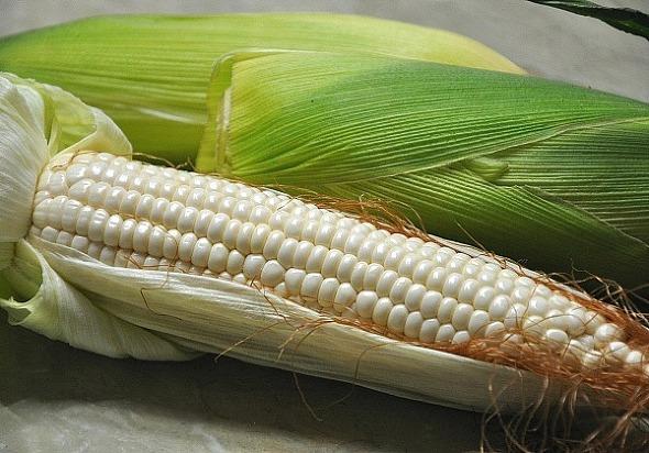 옥수수 맛있게 삶는법(옥수수 영양*옥수수 보관법)