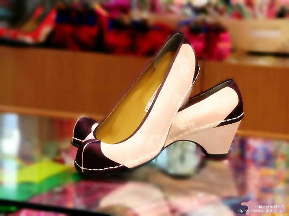 아름다운 신발-당혜(唐鞋)