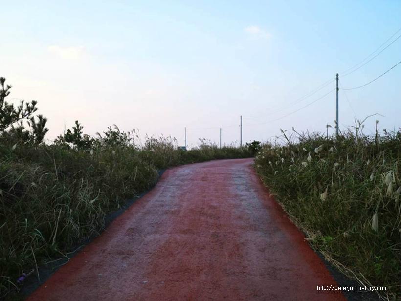 한적한 시골길
