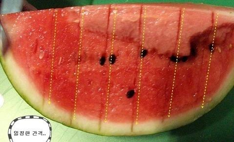 과일,수박, 자르는 법