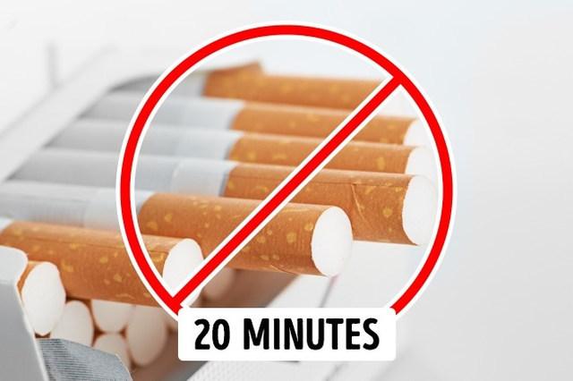 밥 먹고 바로 담배 식후땡 생활 건강