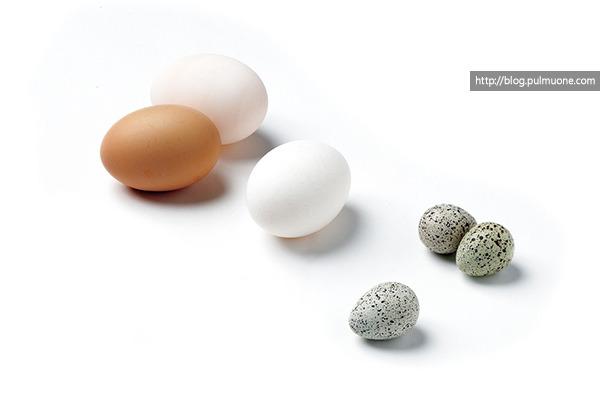 라면에 달걀을 넣는 별별 방법, 8가지~!