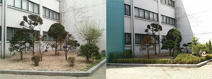 덕수고등학교 상록수원