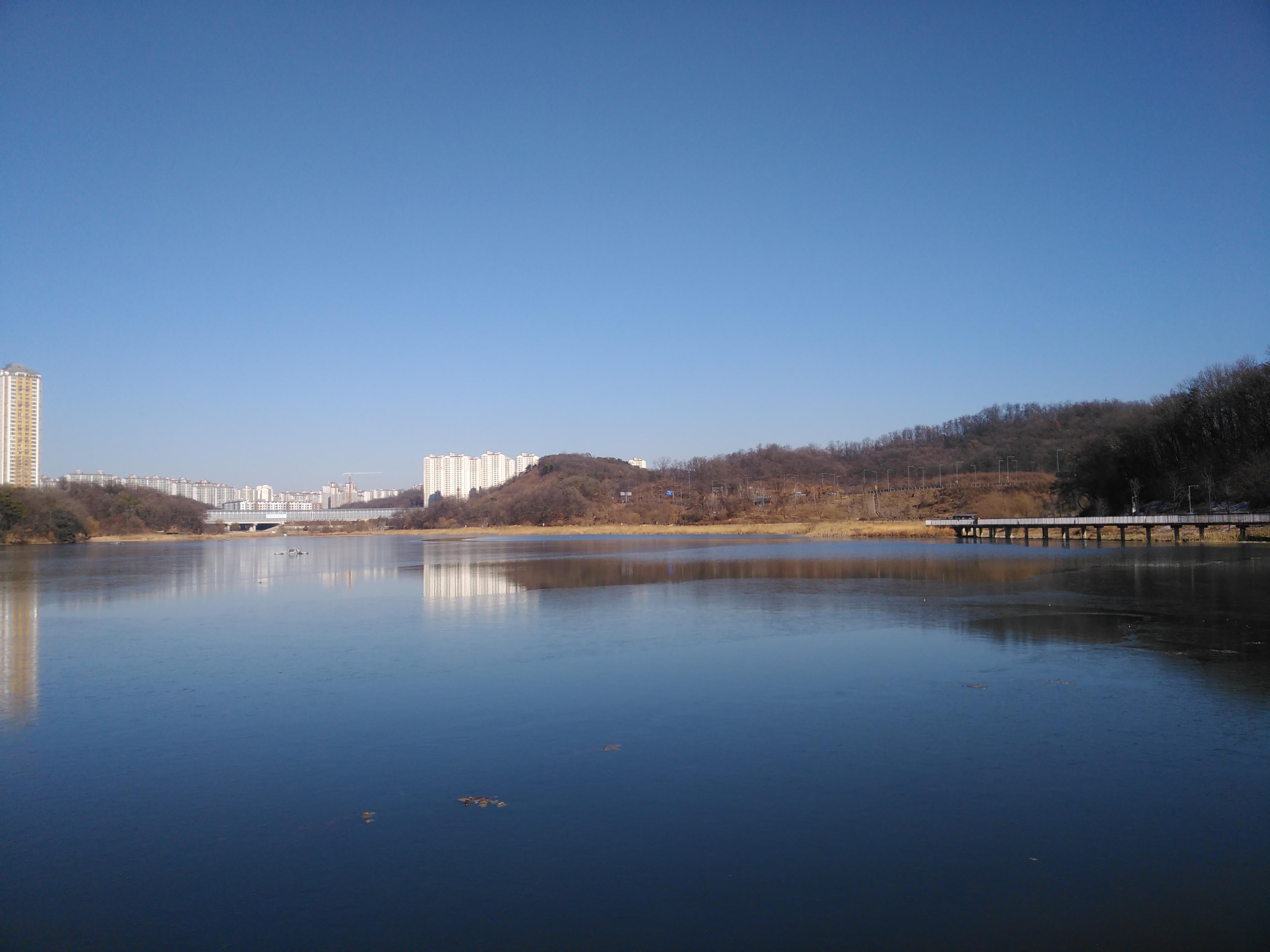 호수 공원의 풍경