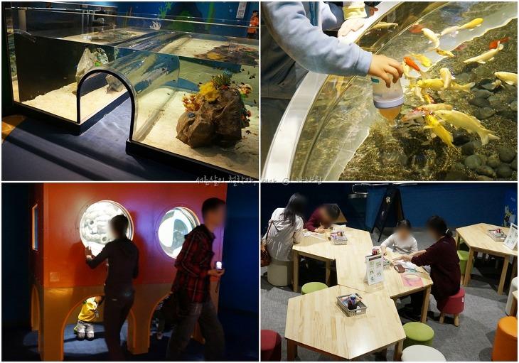 롯데월드몰, 데이트하기 좋은 장소, 데이트 코스, 롯데월드몰 아쿠아리움, 서울 수족관 데이트, 롯데월드몰,