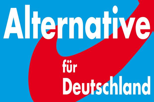 극우 '독일을 위한 대안'당은 어떻게 창당 4년만에 의회 입성했나