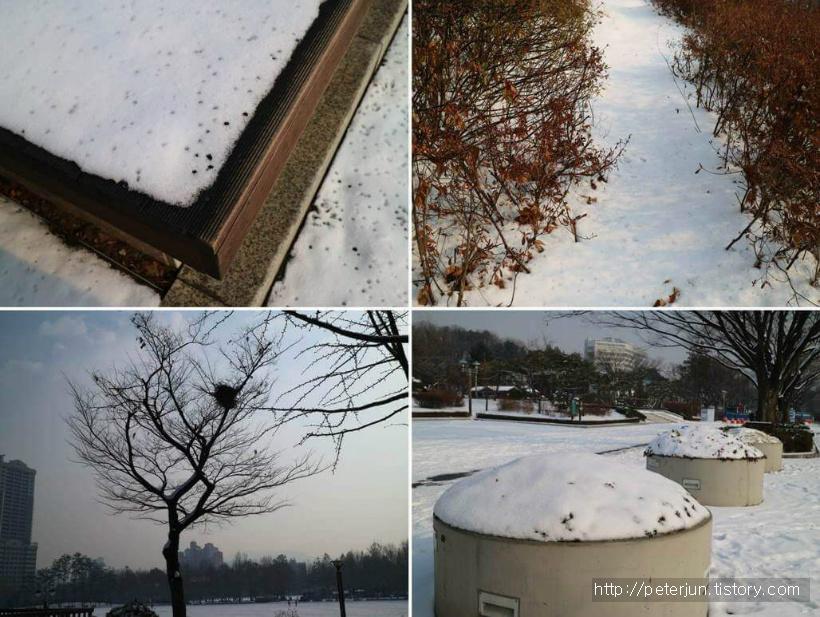 눈덮인 보라매공원 풍경들