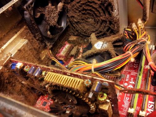 컴퓨터 먼지 computer inside dust