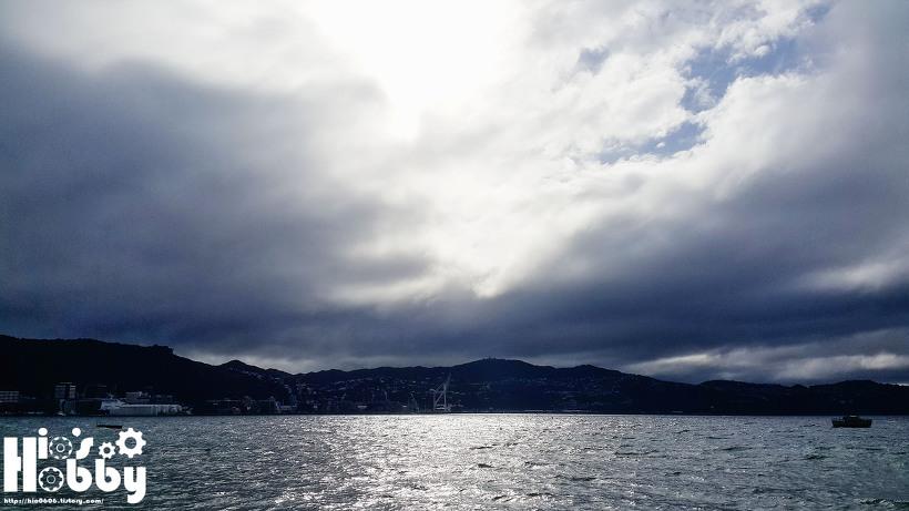 뉴질랜드 바다