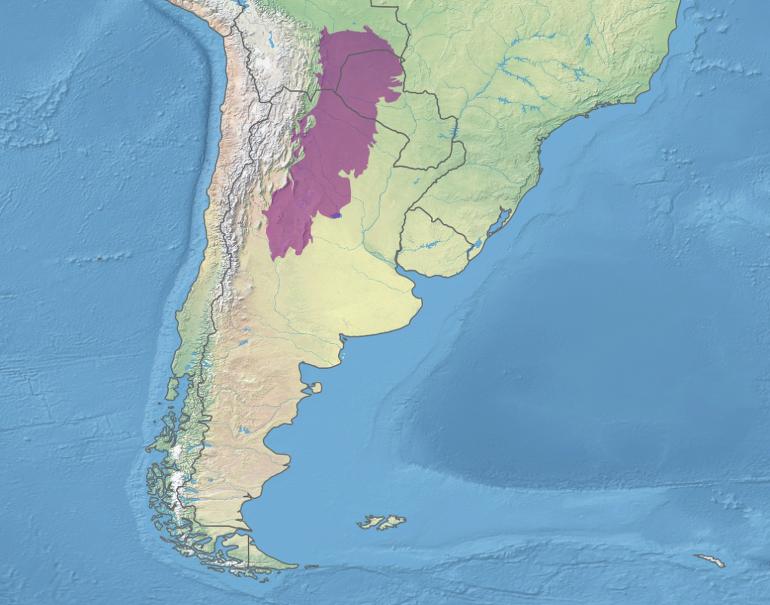 세계의 생태지역 : 그랜드 차코 (Gran Choco)